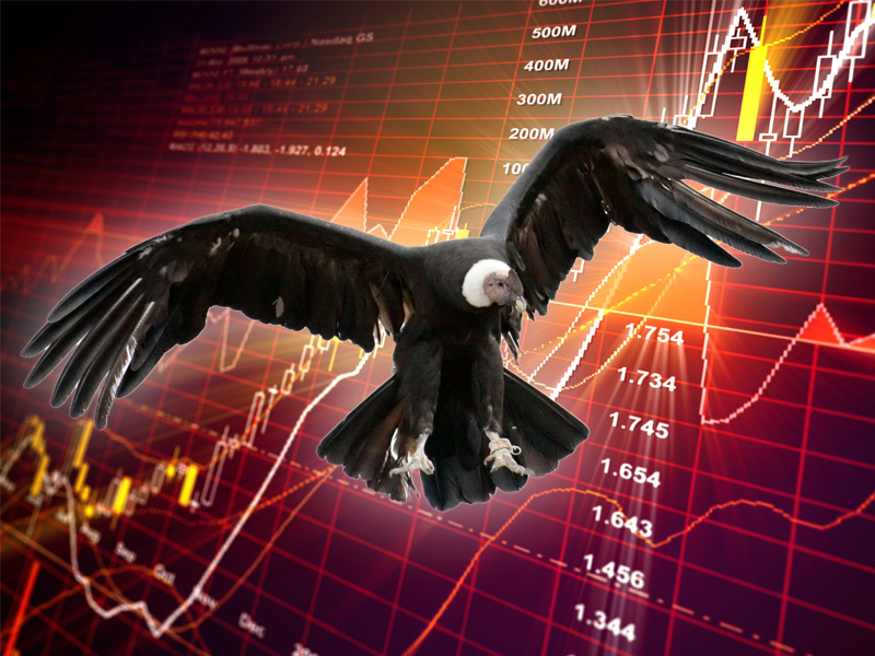 Iron butterfly binary options